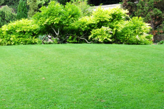 Bridgend turf installation costs